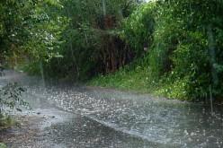 El origen del característico olor a lluvia